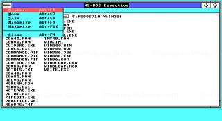 Windows 2.01 - Opciones de ventana