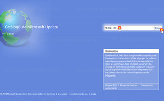 Microsoft - Catálogo de Microsoft Update