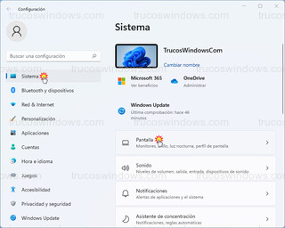 Windows 11 - Sistema > Pantalla