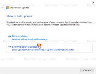 Show or Hide Updated - Show hidden updates