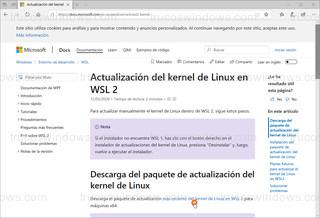 Microsoft Edge - Kernel de Linux en WSL 2